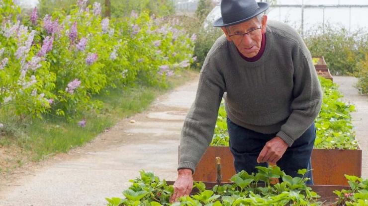 Trabajo en el jardín huerto de Tercera Actividad Aguilar
