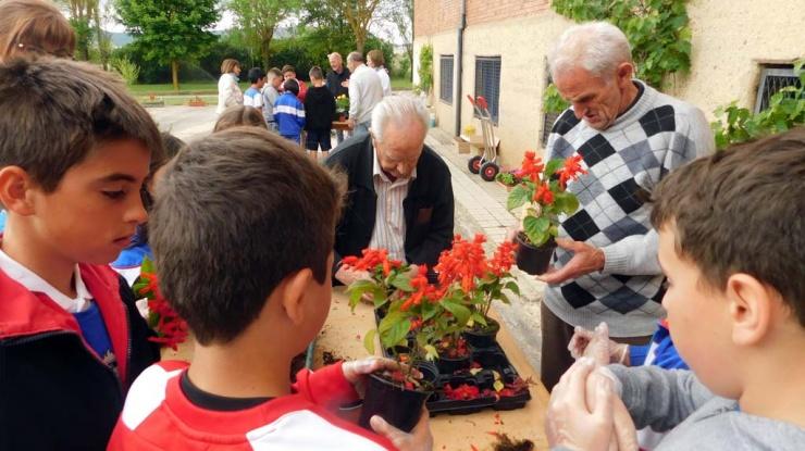 Abuelos de Tercera Actividad sembrando plantas con alumnos del colegio San Gregorio