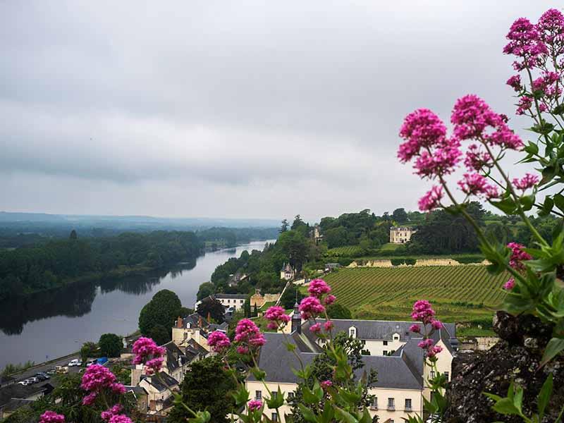 Chinon, Loira